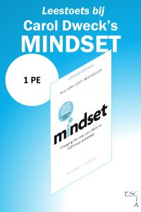 permanente educatie managementboek mindset