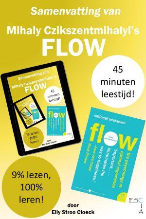 Samenvatting Flow