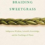 Duurzaamheid Braiding sweetgrass